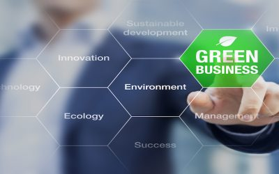 Why Sustainability and Why Now?