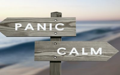Blog: Remaining calm and focussed during the COVID-19 pandemic