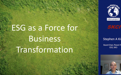 Video: Environmental, Social & Governance and Business Transformation – Part 2