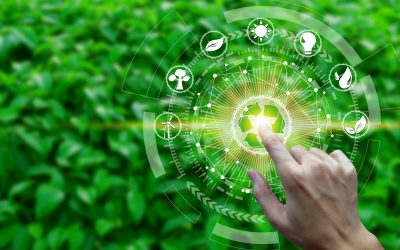Insight Article: ESG As A Force For Business Transformation