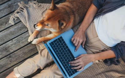 Blog: Will Mass Remote Working Remain a Reality Post-Pandemic?